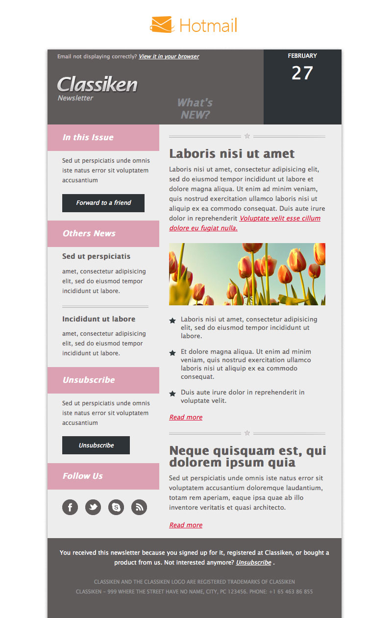 Classiken html newsletter template e mail templates for Hotmail email template