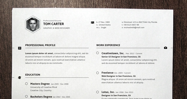 Simple Resume Template vol3 Resumes Templates – Professional Profile Template