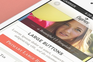 Caprice iPhone App UI Kit Psd