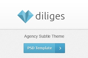 Diliges Agency Psd Web Template