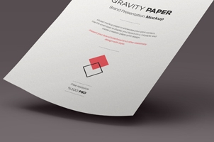 Psd A4 Paper Mock-Up Vol4
