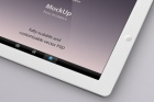 Psd iPad Perspective Mockup