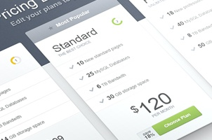 Psd Web Pricing Boxes