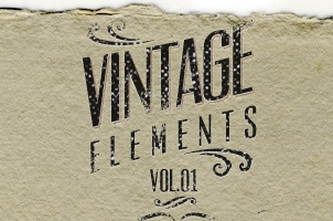 Vintage Vector Ornaments Vol1