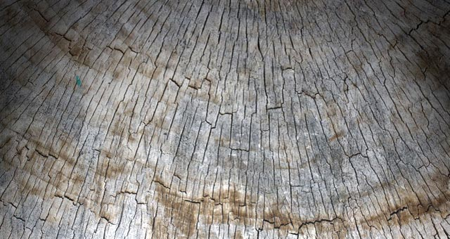 Old Wood Texture Pack 1 05