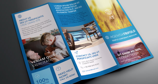 Tri Fold Brochure Templates. Brochure Carpet Cleaning TriFold ...