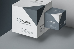 Gravity Square Psd Box Mockup