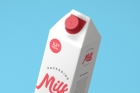 Milk Packaging Psd Mockup Vol3