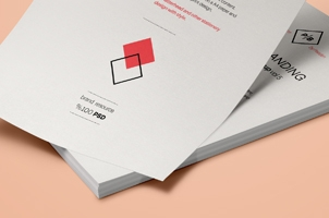 Psd A4 Paper Mock-Up Vol6
