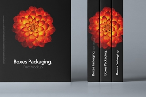 Psd Boxes Packaging Pack Mockup 2