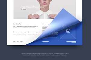 Psd Web Project Presentation