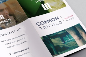 Premium And Free Brochure Templates Pixeden - Simple brochure templates