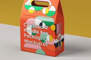 Takeaway Psd Handle Box Packaging 2